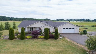 Chehalis Single Family Home For Sale: 430 Bunker Creek Rd