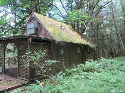 Single Family Home For Sale: 300 E Canyon View Lane
