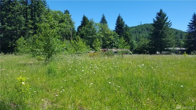 Lewis County Residential Lots & Land For Sale: 865 Main Ave