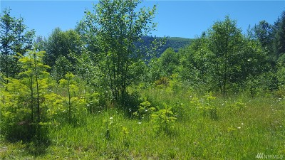Lewis County Residential Lots & Land For Sale: 853 Main Ave