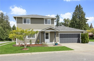 Lake Stevens Single Family Home For Sale: 709 89th Ave SE