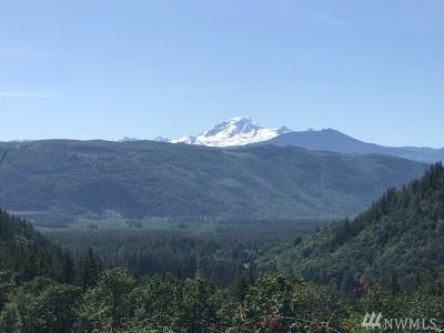 Sumas WA Residential Lots & Land For Sale: $249,950