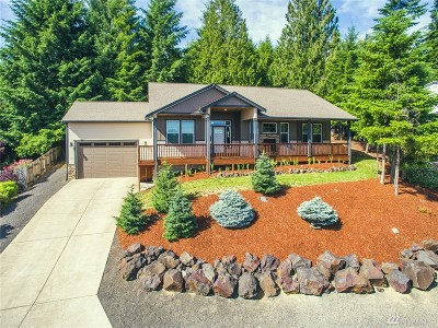 Lewis County Single Family Home For Sale: 132 Jackson View Dr