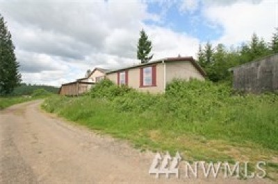 Lewis County Single Family Home For Sale: 134 Farmview Dr