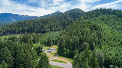Lewis County Single Family Home For Sale: 12554 Us Hwy 12