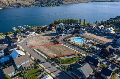 Chelan, Chelan Falls, Entiat, Manson, Brewster, Bridgeport, Orondo Residential Lots & Land For Sale: 423 Porcupine Lane
