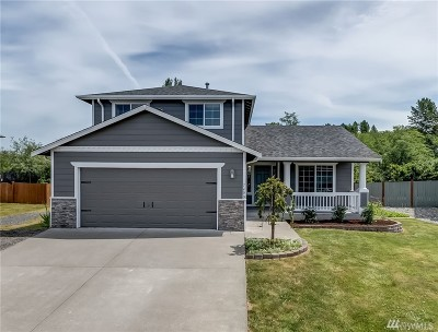 Blaine Single Family Home For Sale: 7490 Sole Dr