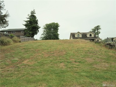 Grays Harbor County Residential Lots & Land For Sale: 588 Mt Olympus SE