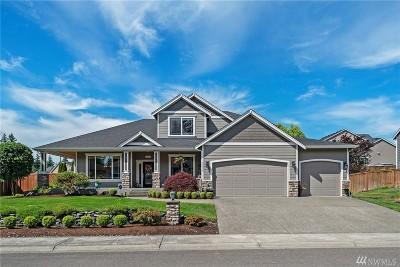 Pierce County Single Family Home For Sale: 17314 136th Av Ct E