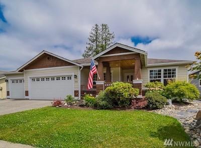 Lake Stevens Single Family Home Contingent: 3311 116th Ave NE