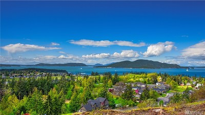 Anacortes Residential Lots & Land For Sale: 3939 Rock Ridge Pkwy