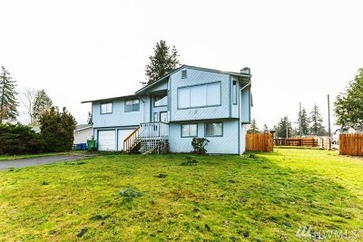 Spanaway Single Family Home For Sale: 2016 167th Street Ct E