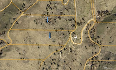 Chelan, Chelan Falls, Entiat, Manson, Brewster, Bridgeport, Orondo Residential Lots & Land For Sale: Springs Canyon Rd