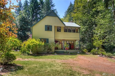 Mason County Single Family Home For Sale: 460 SE Gosnell Lane