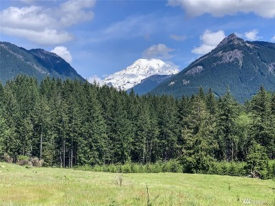 Lewis County Residential Lots & Land For Sale: 150 Burl Lane