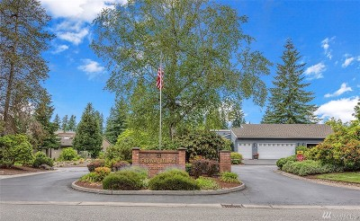 Snohomish County Condo/Townhouse For Sale: 15000 Village Green Dr #1