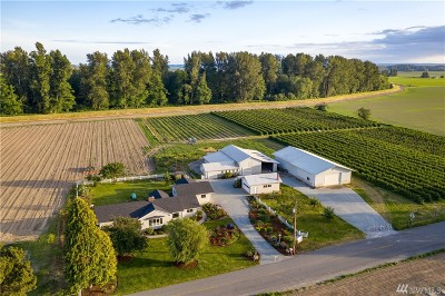 Skagit County Farm For Sale: 16644 W Kamb Rd