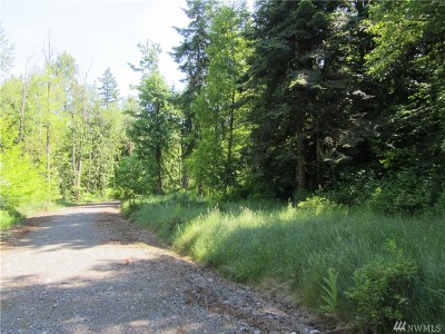 Everson WA Residential Lots & Land For Sale: $329,000