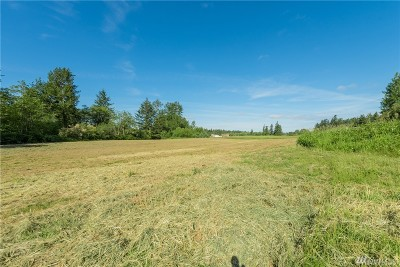 Whatcom County Residential Lots & Land For Sale: 4108 Loomis Trail Rd
