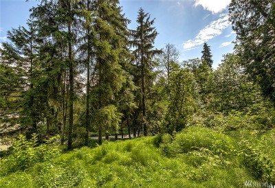 Residential Lots & Land For Sale: 17239 28th Ave NE