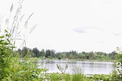 Lake Stevens Single Family Home For Sale: 6027 97th Dr NE