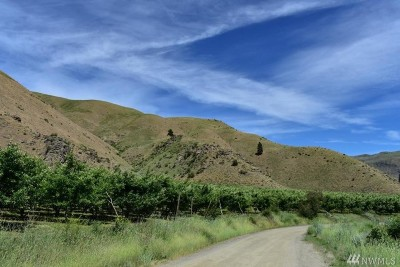 Farm For Sale: 6790 Swakane Canyon Rd
