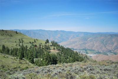 Chelan, Chelan Falls, Entiat, Manson, Brewster, Bridgeport, Orondo Residential Lots & Land For Sale: Pioneer Ridge Rd