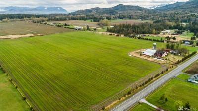 Everson , Nooksack, Sumas Farm For Sale: 3670 South Pass Rd