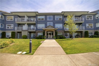 Bellingham Condo/Townhouse For Sale: 516 Darby Dr #110