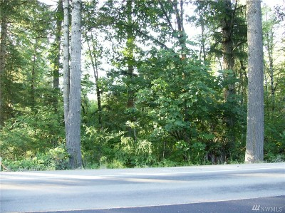 Residential Lots & Land For Sale: S Toutle Rd