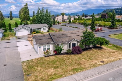 Skagit County Single Family Home For Sale: 981 Peterson Rd
