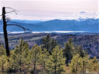 Chelan, Chelan Falls, Entiat, Manson, Brewster, Bridgeport, Orondo Residential Lots & Land For Sale: 73 Laughing Bear Lane
