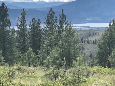 Chelan, Chelan Falls, Entiat, Manson, Brewster, Bridgeport, Orondo Residential Lots & Land For Sale: 19 Laughing Bear Lane