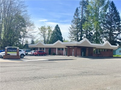 Ferndale Commercial For Sale: 5616 3rd Ave