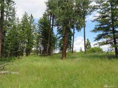 Residential Lots & Land For Sale: W Curlew Lake Rd
