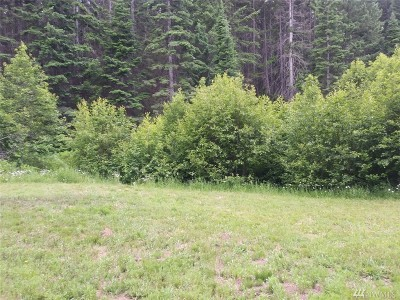 Residential Lots & Land For Sale: Lot 47 Wagon Wheel Rd