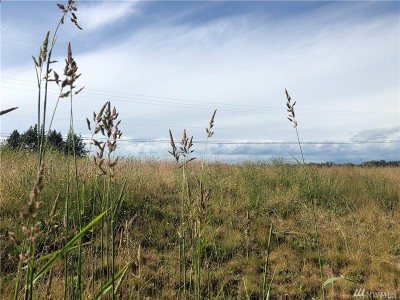 Whatcom County Residential Lots & Land For Sale: 1 River Rd