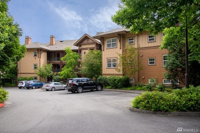 Issaquah Condo/Townhouse For Sale: 1000 Cabin Creek Lane SW #D207
