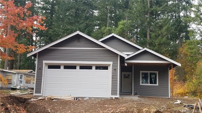Single Family Home For Sale: 1910 Lake Dr SW