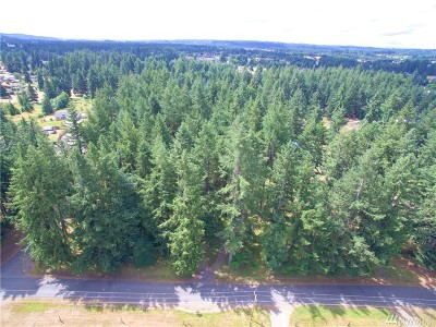 Residential Lots & Land For Sale: 173rd Ave SW