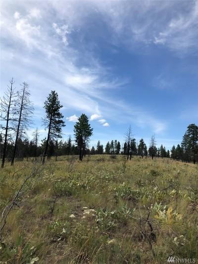 Chelan, Chelan Falls, Entiat, Manson, Brewster, Bridgeport, Orondo Residential Lots & Land For Sale: Washington Creek