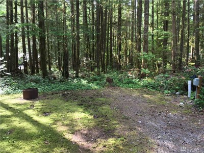 Whatcom County Residential Lots & Land For Sale: 103 Pioneer Cir