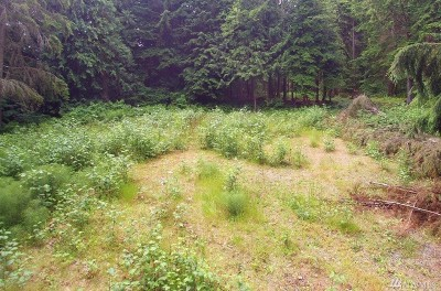 Snohomish County Residential Lots & Land For Sale: 17800 Jordan Road