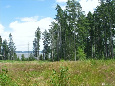 Shelton Residential Lots & Land For Sale: Lot 2 Old Olympic Hwy