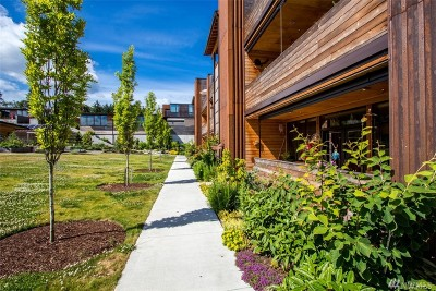 Bainbridge Island Condo/Townhouse For Sale: 363 Ambrose Lane