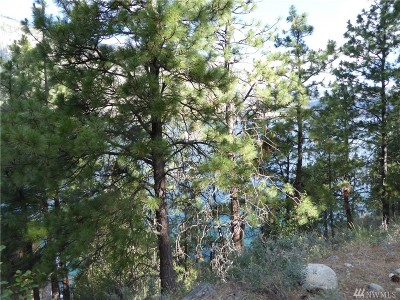 Douglas County, Chelan County Residential Lots & Land For Sale: 9 Kutil Place