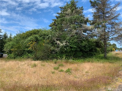 Residential Lots & Land For Sale: 573 Point Brown Ave SW
