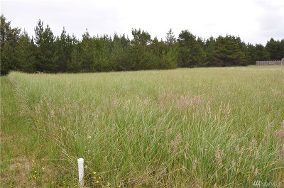Residential Lots & Land For Sale: 408 17th St SW