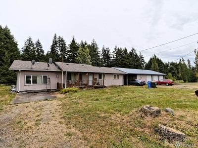 Chehalis Single Family Home For Sale: 313 Brown Rd E