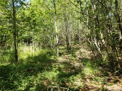 Residential Lots & Land For Sale: 1 SE Willock Rd